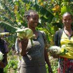 Con gli orti la sicurezza alimentare
